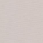 фентнзи-серый