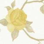 крымская роза-бежевый